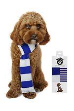 CALCIO Cane Sciarpa. Blu e Bianco Everton Blackburn Leicester QPR Chelsea