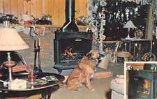 Portland Maine Franklin STUFA CAMINO Pubblicità Vintage cartolina J75781