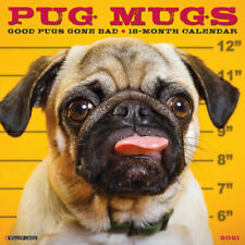 Pug Mugs (dog breed calendar) 2021 Wall Calendar (Free Shipping)