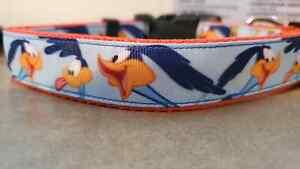 Looney Tunes Road Runner Dog Collar