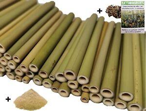 Wildbienen Bambusröhrchen Insektenhotel 12 cm / 70 St / ø 3-8mm +Lehmpulver+mehr