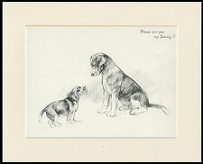 BEAGLE & PUPPY CHARMING VINTAGE 1930'S DOG ART PRINT by KF BARKER READY MOUNTED