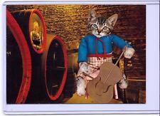 VINTAGE KRUGER DRESSED TABBY KITTEN CAT PLAYING THE VIOLIN POSTCARD