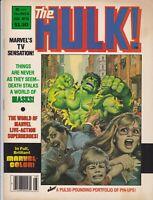 HULK MAGAZINE #13 VF- 1979 DOUG MOENCH MIKE ZECK MARVEL COMICS