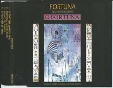 FORTUNA ft SATENIG - o Fortuna CDM 4TR Euro House 1991 (RED BULLET) Holland