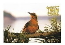 TWIN PEAKS GOLD BOX POSTCARD #2 BIRD POST CARD