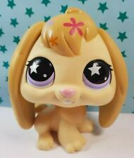 Littlest Pet Shop Figur XL Deco Bunny Pet LPS