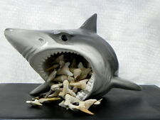 Shark Head retail store counter Display Shark Tooth Jaw Shark Teeth NOT included