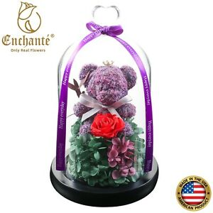 Real Preserved Eternity Forever Rose with Bear Dome Birthday Wedding Unique Gift