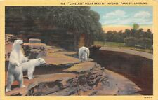 POSTCARD   POLAR    BEARS   in  Forest  Park  St  Louis   MO