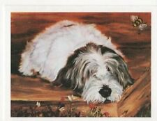Petite Basset Griffon Vendeen with Bee 12 Note Cards w/ Envelopes Ruth Maystead