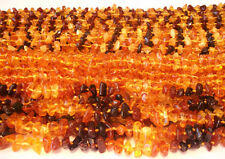 Wholesale 40 Baltic Amber Baby Necklaces Mixed Color 12.20 - 13.40 inches
