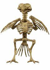 """Halloween Plastic Skeleton BIRD CROW RAVEN PIGION CHICKEN 7.5"""" Decoration New"""
