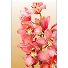 Magnete Da Frigorifero decocrazione Orchidea 60x90cm ref 6231 6231