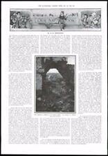 1916 - Antique Print FRANCE Combles Village Ruined Church Breach  (139)