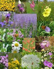 SCHMETTERLINGS- UND BIENENWEIDE 25g heimische Wildblumen Blühstreifen