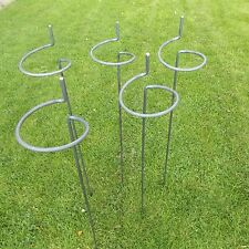"5 x Tall Heavy Duty Victorian Style Wraparound Plant Supports 5/16"" Steel Bar"