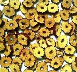 Organic Jujube Fruit Slices - Ziziphus jujuba - Natural Apothecary Wicca Herb