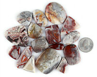 Natural Crazy Lace Agate Cabochon Lots Healing Loose Gemstone Jewelry Making