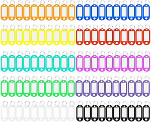 200 pcs ID Labels Tags with Split Ring Plastic Key Tags with Label Window 10