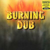 Revolutionaries Burning Dub Vinyl LP Rare Reggae Record NEW