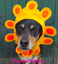 """Late Bloomer flower costume for dogs 18-24"""" collar size"""