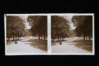 Nîmes La Fontana Francia Stereo Targa Di Vetro Vintage Ca 1925