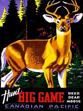 ART PRINT POSTER VINTAGE TRAVEL HUNT CANADA DEER NOFL1523
