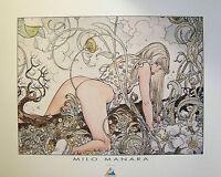 Milo Manara Comic Art Erotic Kunstdruck Schlingpflänzchen Erotik Nude Akt 80x60