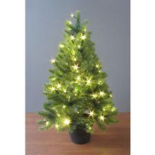 Weihnachtsbaum Kaufen Echt.Weihnachtsbaum Topf Günstig Kaufen Ebay