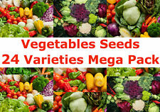 Vegetables Seeds 24 Varieties Mega Seeds Packs Registered AusPost Delivery