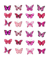24 x Large Butterfly Edible Cupcake Toppers Birthday Party Cake Decoration