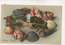 The Fountain Old Steine Brighton 1905 Embossed Shells Postcard 502b
