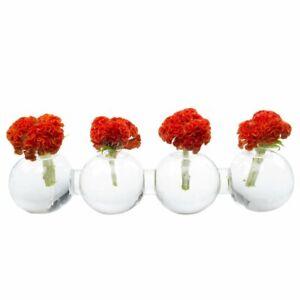 ❤️ CHIVE Big Carterpillar Clear Glass Bud Vase For Short Flower Display-NWOB