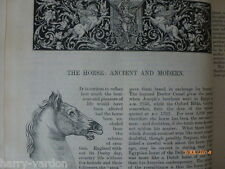 Horse Ancient Modern 1884 Rare Old Victorian Antique Article Racehorse Stallion