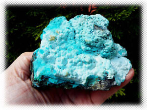 0.6lb - Natural Unpolished - Chrysocolla - Mineral Specimen