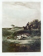 GREYHOUND EARLY COURSING DOG FINE ART ENGRAVING PRINT by William J Shayer Jnr