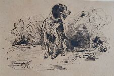 Beau dessin à l' encre XVIIII è Epagneul Chien de chasse hunting dog french 18th