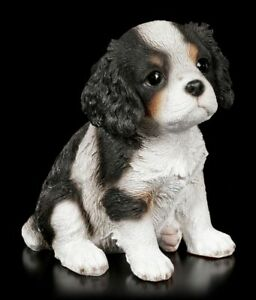 Hunde Welpen Figur - Cavalier King Charles Spaniel - niedliche Hundefigur Deko
