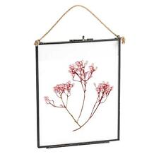 Hanging Photo Frame Vintage Glass Picture Wall Display 8x10 Photos