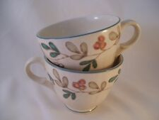 Mikasa Country Classics Cottage Flair DC306 Set of 2 Tea Cups Coffee Retired