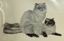 New listing Himalayan Cats Lot of 20 Ceramic Decals