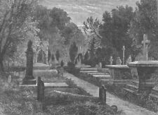 KENSAL GREEN. The Green Cemetery. London c1880 old antique print picture