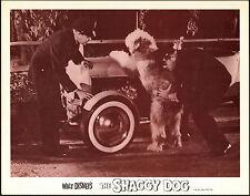 THE SHAGGY DOG original DISNEY lobby card HOT ROD ROADSTER 11x14 movie poster