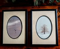 Pair Vintage Framed BARRY GAMOW NATURE PHOTOGRAPHS Signed and Double Matted NEW
