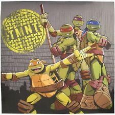 """Teenage Mutant Ninja Turtle TMNT Shower Curtain Nickelodeon Exterior 72"""" x 72"""" F"""