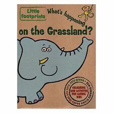 Little Footprints - What's happening on the Grassland? Activity Book Children.