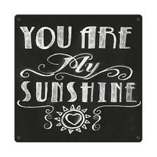 You Are My Sunshine Metal Sign Music Song Verse inspirational Wall Decor pts483