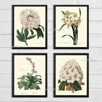 Unframed Botanical Print Set of 4 Antique White Flowers Home Room Wall Art Decor
