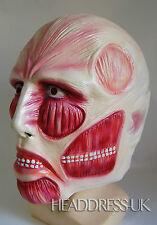 Halloween Mask Anatomy Muscle Face